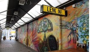 Lemon Lane Lounge